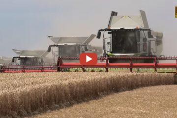 Schwaden und Pressen in einem Arbeitsgang | landwirt com